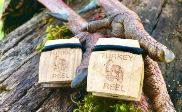 Turkey call photo